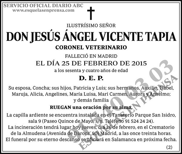 Jesús Ángel Vicente Tapia